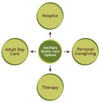 Ancillary Senior Care Options